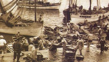 De vloot van Douarnenez brengt sardientjes