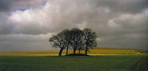 Borger. Foto: L.J.A.D. Creyghton